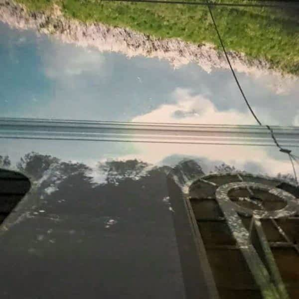 Mini - Brighton Digital Blog Set2